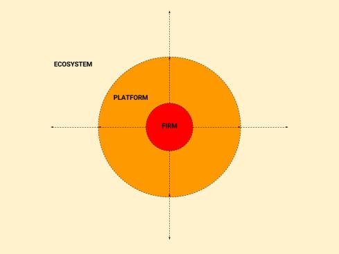 Platform Firm Ecosystem